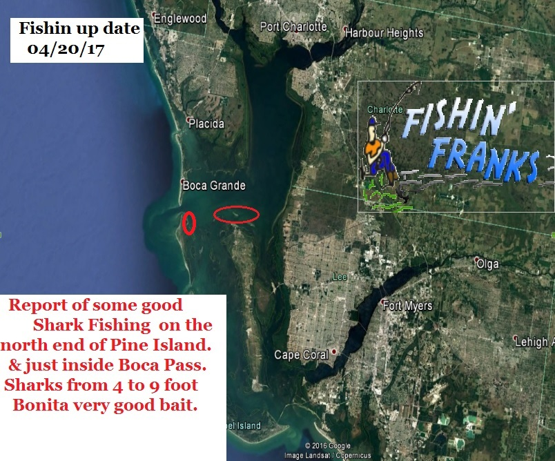 fishin franks fishing report a place by place fishing On fishin franks fishing report